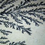 Psilomelane Dendrites